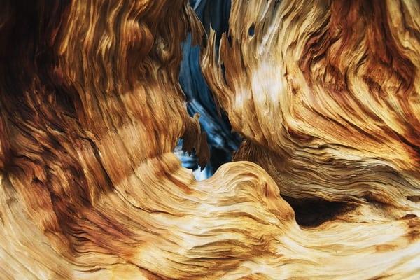 Les naravni material za pohištvo